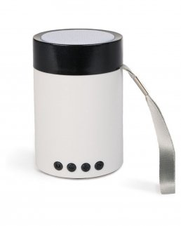 Speaker bluetooth con radio