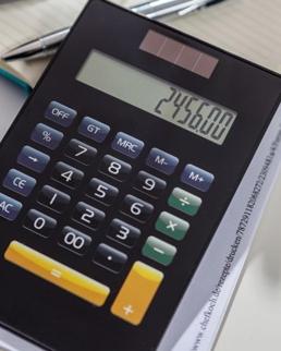 Calcolatrice Newton