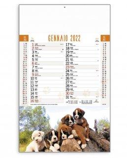 Calendario Cani e Gatti Trimestrale 12 fogli