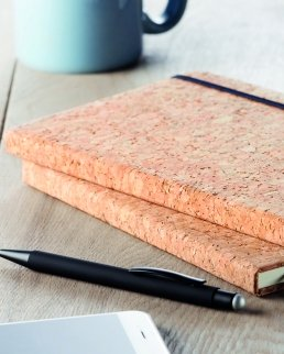 Quaderno Sauber
